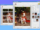 This digital photo enlargement software helps you to print photos (digital photos, film photos, digital art, graphics, scanned images, any digital image file) of huge size by enlarging it using highly advanced photo enlargement engine and splitting to the sheets of paper